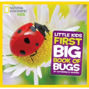 National Geographic Little Kids Big Book of Bugs