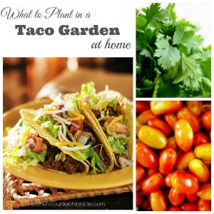 What to Plant in a Taco Garden
