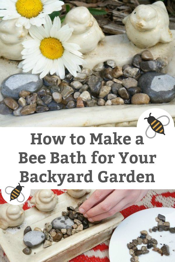 how to make a bee bath