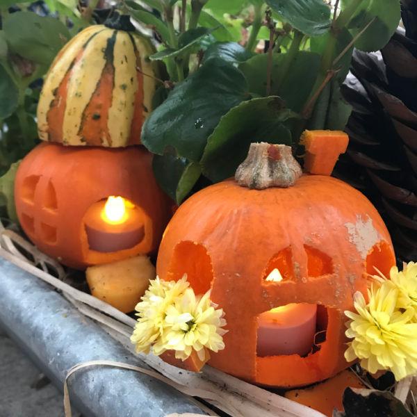 2 little pumpkin fairy houses in garden