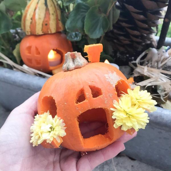 little pumpkin jack o'lantern in hand