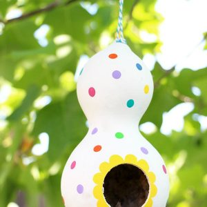 diy-polka-dot-gourd-birdhouse