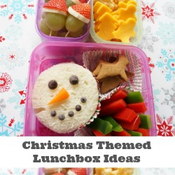 christmas lunchbox