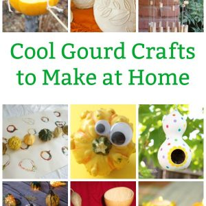 cool gourd crafts to make at home