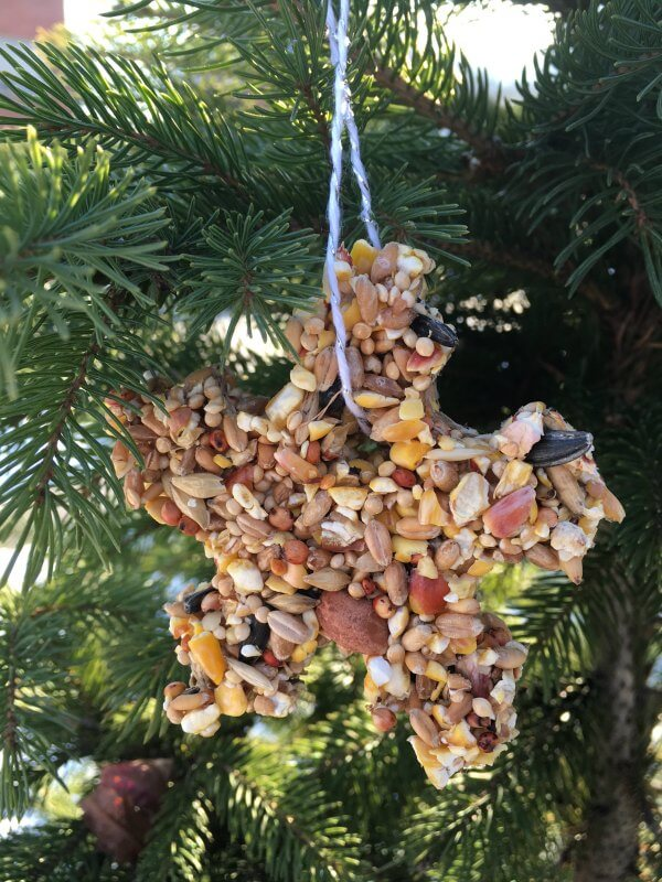 Bird Seed Christmas Ornament