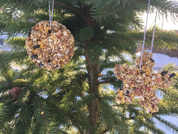 Bird Seed Christmas Ornaments