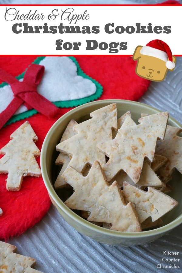 Cheddar and Apple Dog Christmas Cookies - Bake up a batch of these dog biscuits. Using ingredients that are safe and healthy for dogs (rice flour and no sugar or salt). A fun way to show your love for your four footed friends. | Dog Biscuit Recipe | Baking with Kids | Christmas for Dogs |