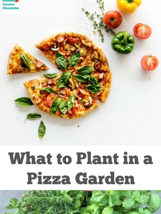 What to Plant in a Pizza Garden – Gardening with Kids