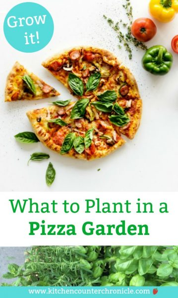 What to plant in a pizza garden