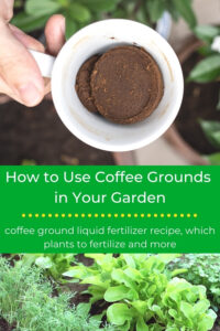 how to use coffee grounds in the garden title with cup of coffee grounds and herb garden