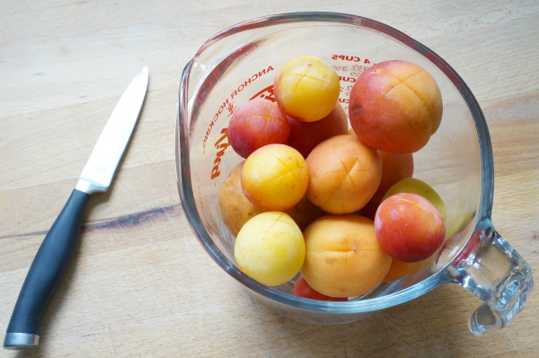 plums in pyrex for peeling