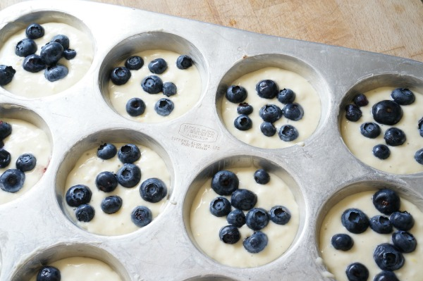 lemon blueberry pancake muffins unbaked in tin