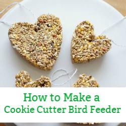 cookie cutter bird feeder popular post