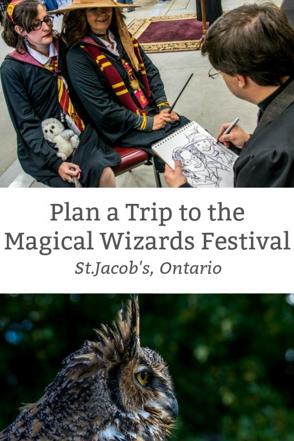 plan a trip to the magical wizards festival