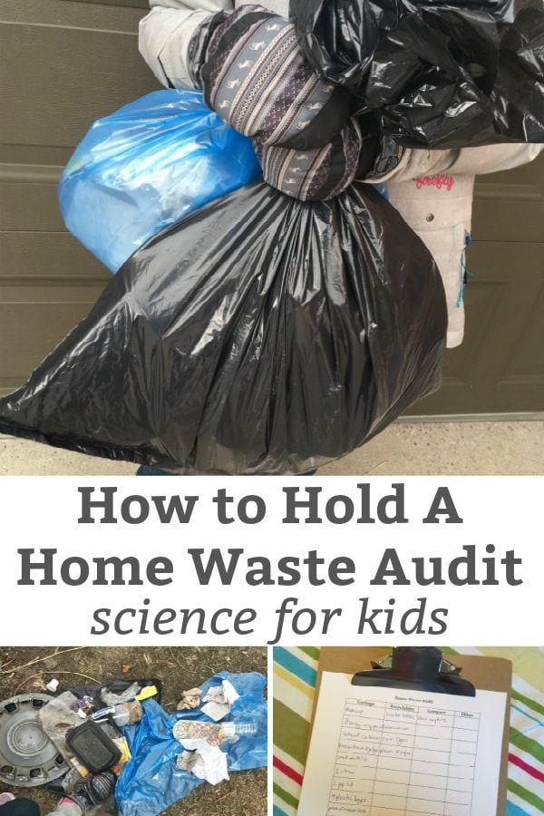 how to have a home waste audit