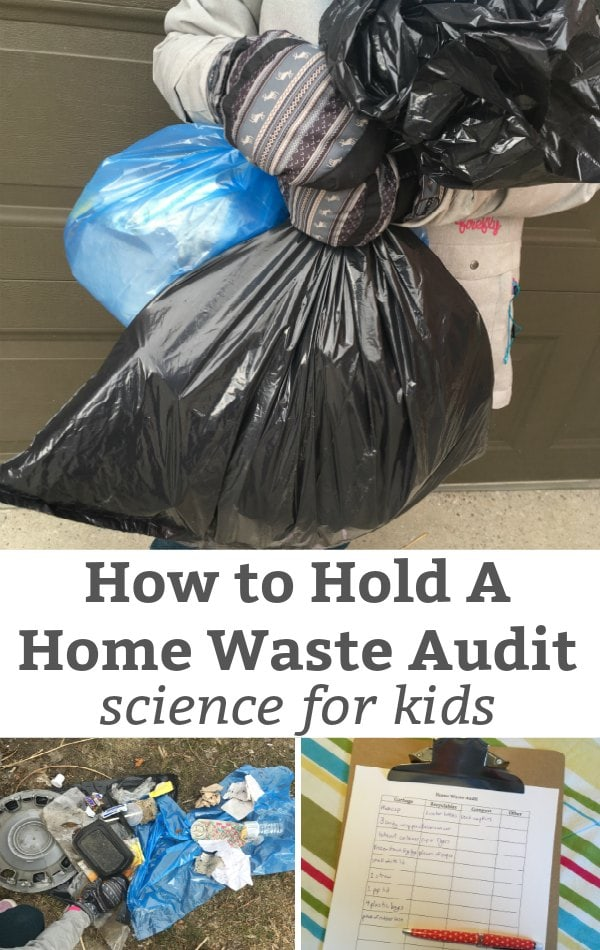 how to hold a home waste audit science for kids