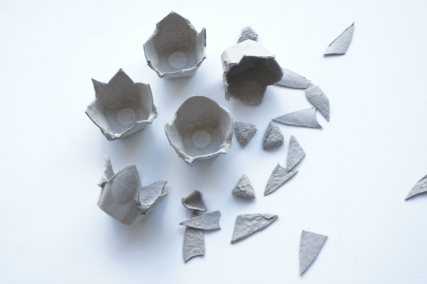 egg carton cut into pieces