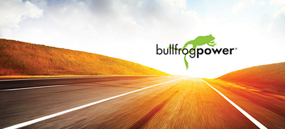 bullfrog green fuel