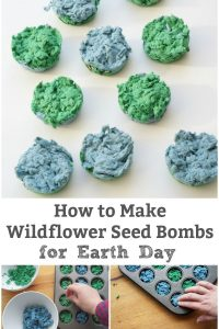 how to make a seed bomb for earth day