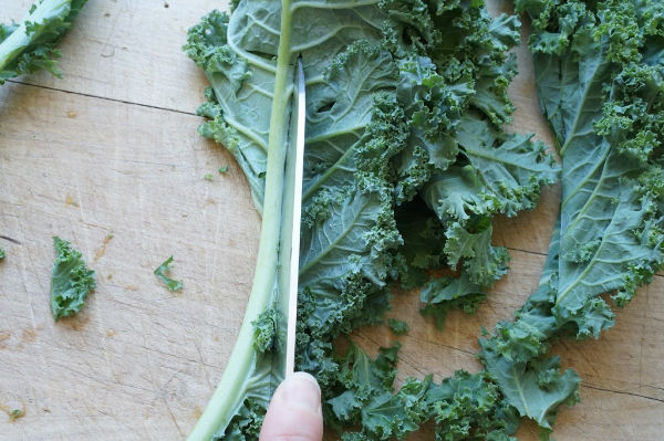cutting kale off the stems with a knife