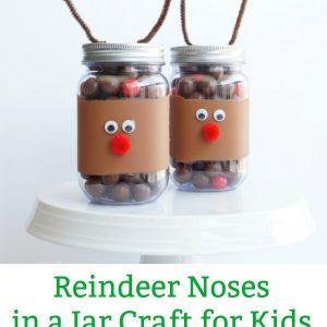 reindeer noses mason jar pin