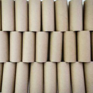 empty toilet paper rolls