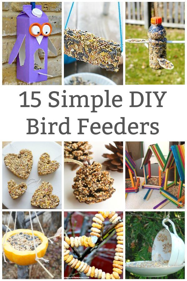 simple bird feeder to make