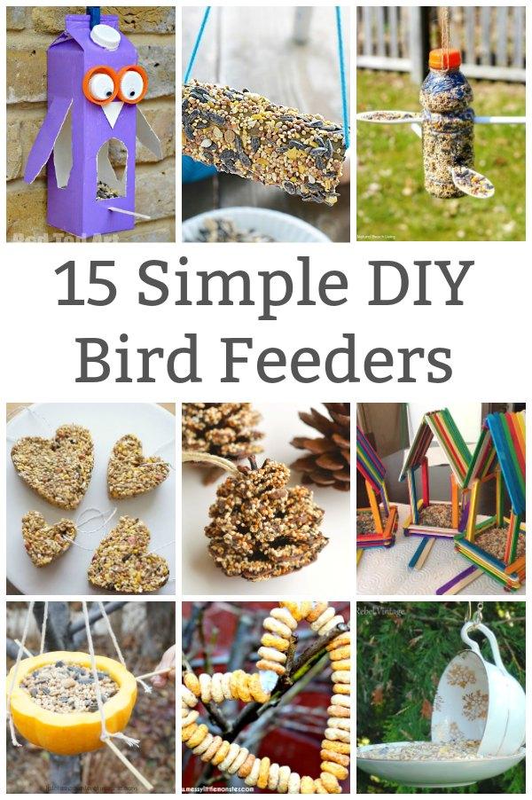 simple bird feeder to make