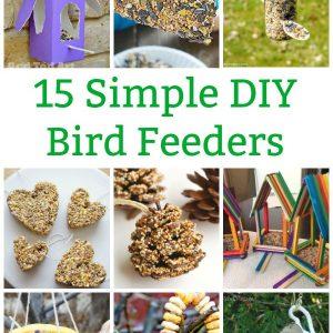 simple bird feeders to make