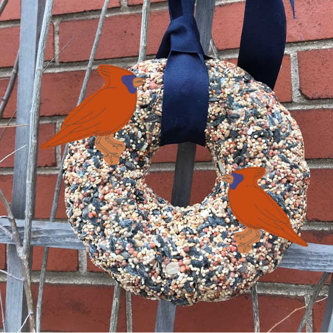 birdseed wreath hanging with cardinals
