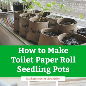 how to make toilet paper roll seedling pots