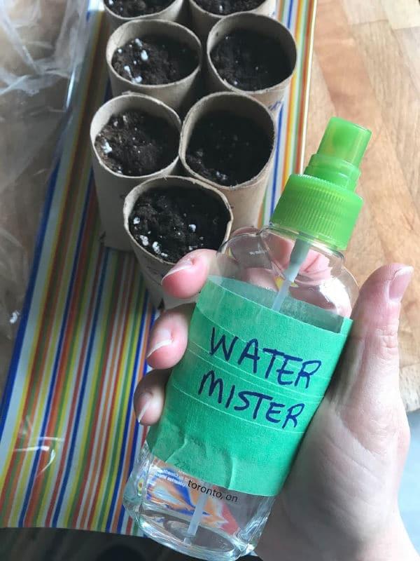 water mister for watering seedlings