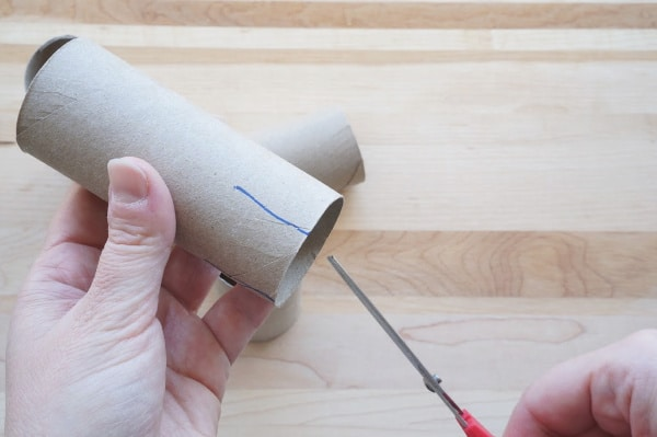 toilet paper roll pot for plants with slits cut in side