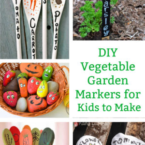 vegetable garden markers pin image