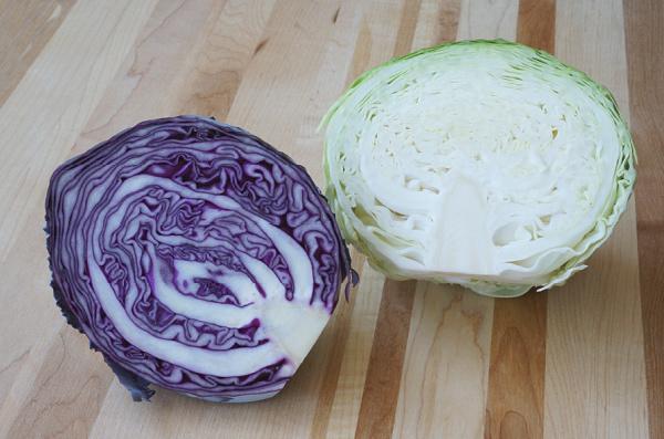 cabbage sliced in half